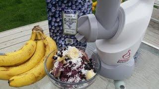 2 Ingredient Raw Vegan Blueberry Banana Nice Cream Made with the Dessert Bullet