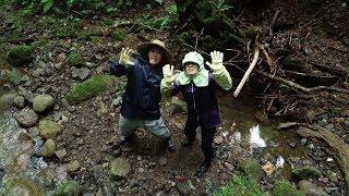 井川町『秘境の地「大蔵又滝」』