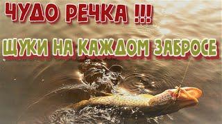 Чудо речка Щуки на каждом забросе Рыбалка на Амуре весной на спиннинг Ловля щуки на спининг