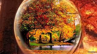 6.Homie - Лето как осень