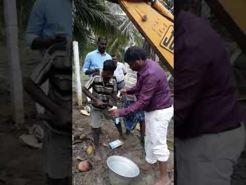 கஜா புயல்: வீழ்ந்த தென்னை மரத்தை மீண்டும் நடுவது