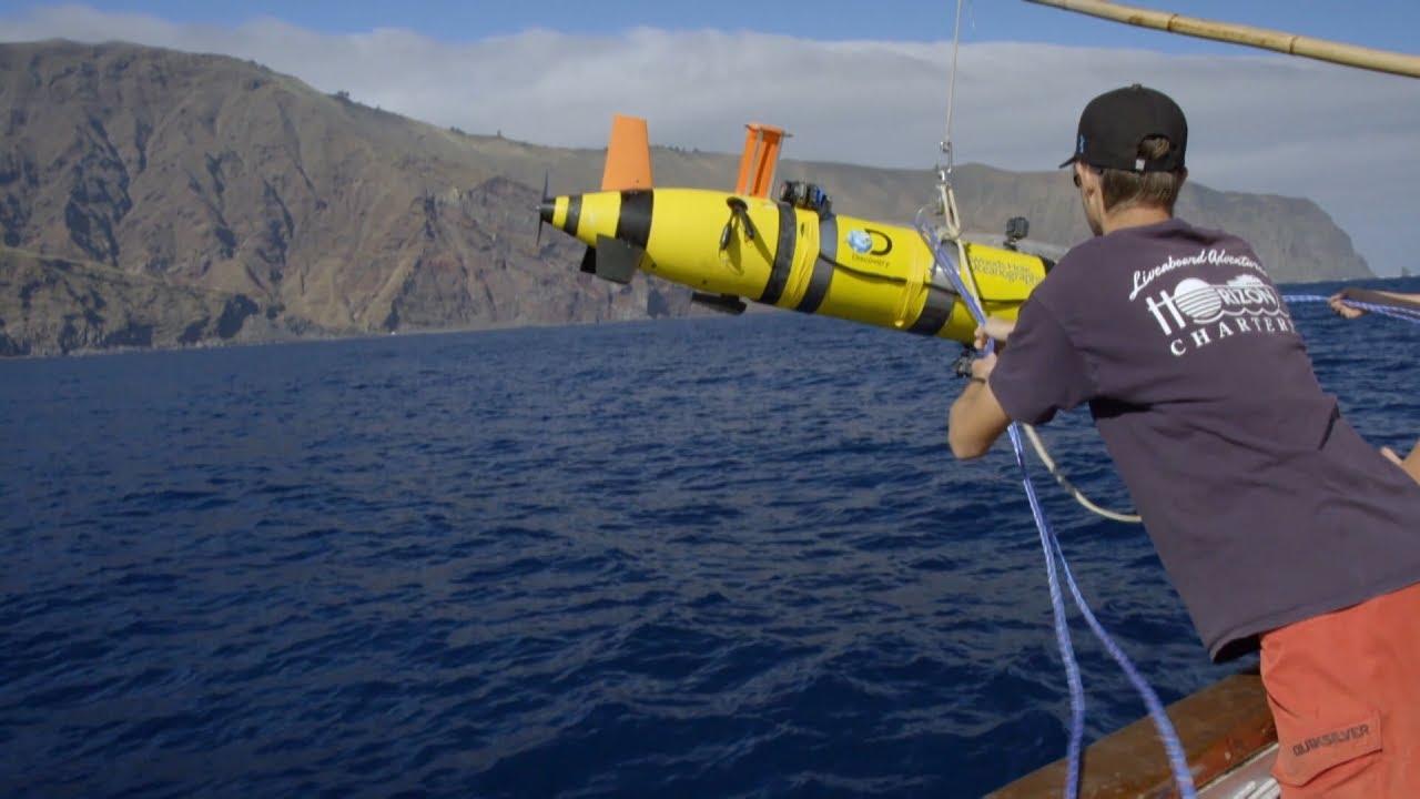 Prédateurs des profondeurs : Sharkcam II, un concentré de technologie !