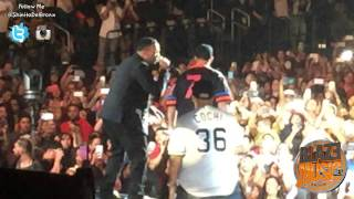 Daddy Yankee Vs Don Omar Live Madison Square Garden #NYC2015
