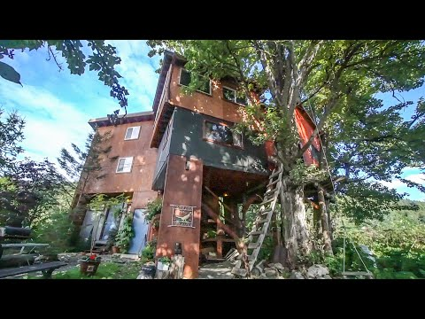 Amazing Alaskan Three Story Treehouse Built With Recycled Materials