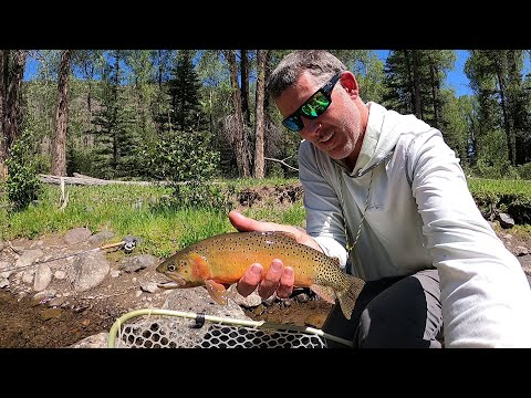 Fly Fishing The Conejos River In Southern Colorado (part 5 In The Series)