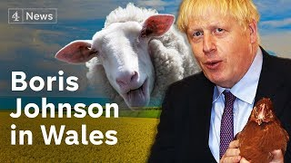 Boris Johnson plays chicken over Brexit amid Welsh no-deal rulings