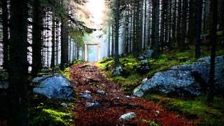 Hip Hop / Trip Hop / Downtempo Mix - The Secret Path Vol. 2