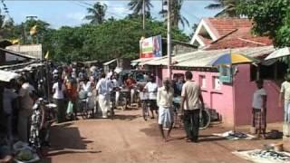 2009 Wennappuwa Sri Lanka Fishmarket