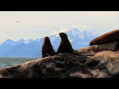 The Great Outdoors: Glacier Bay, Alaska