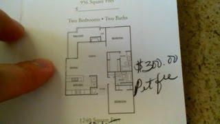 Аренда апартаментов в St. Pete/Clearwater area Florida USA - #2(Подписывайтесь на канал и смотрите больше видео о жизни в США и Америке Читайте мои статьи в Блоггере и..., 2013-03-25T12:16:24.000Z)