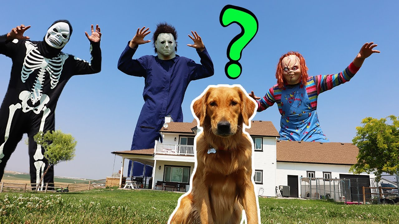 Chucky Surprises Puppy With GIANT Dance Party!