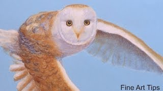 How to Draw a Barn Owl Flying - With Pastel Color Pencils