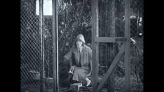 Ella Cinders starring Colleen Moore