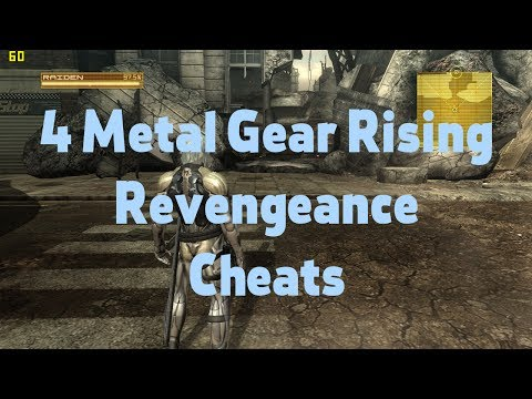 Metal Gear Rising: Revengeance GAME CHEATS (PC) (trainer +4)