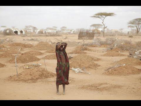 أخبار عالمية - واشنطن تخصص 575 مليون دولار إضافية للحد من خطر #المجاعة  - 10:22-2017 / 9 / 22