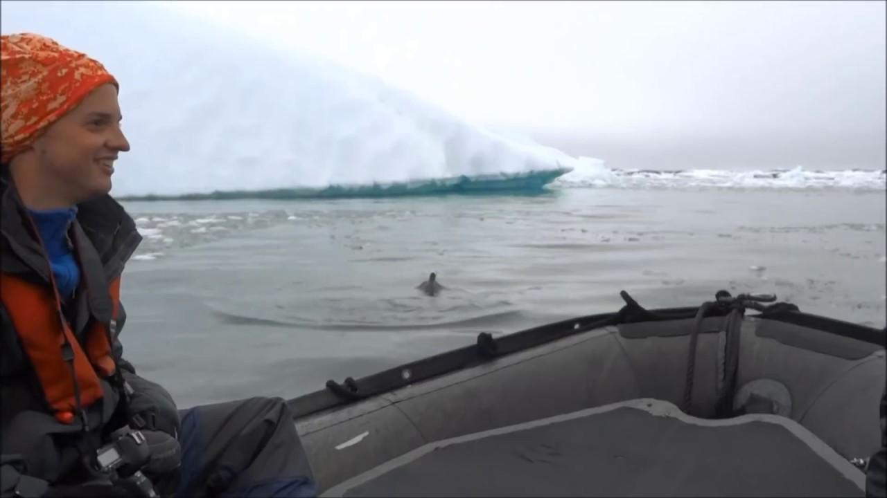 Antarctica 2011 - All Seven Continents!