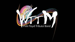 Comfortably numb - Welcome to the Machine Pink Floyd Tribute Band