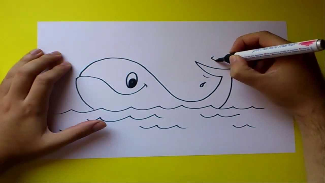 Como dibujar una ballena paso a paso  How to draw a whale  YouTube