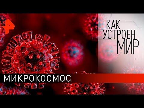 """Микрокосмос. """"Как устроен мир"""" с Тимофеем Баженовым (05.02.20)."""