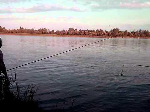 Рыбалка на камплице ростовская область