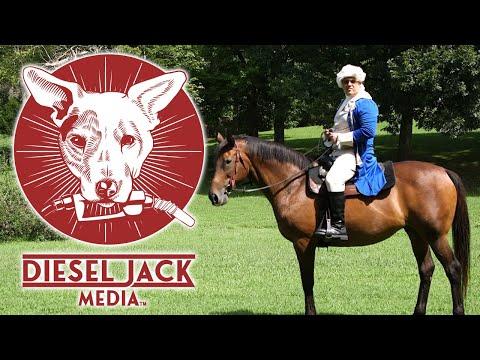 We Are Diesel Jack Media