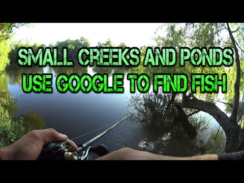 Finding Fish With Google, Bass In A Small Creek/Pond In North Texas