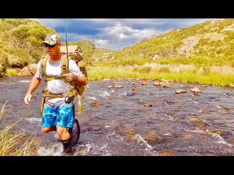 Overnight Trout Fishing Australia, Catch And Cook
