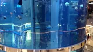 ТЦ Океания, Формула Кино, IMAX лазер