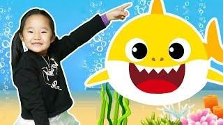 아기상어와 수지 동물원 여행 놀이 Suji and Baby shark go to the zoo 바닷속 탐험 체험 주방놀이 장난감 놀이