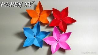 [Paper TV] Origami sakura(Cherry Blossom) 벚꽃(사쿠라) 종이접기 折り紙 サクラ(桜) como hacer cerezo  de papel