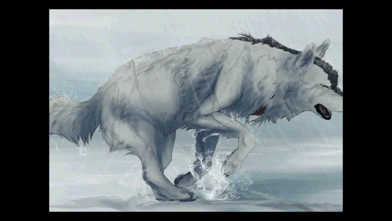 Drawing A Running Wolf In Photoshop