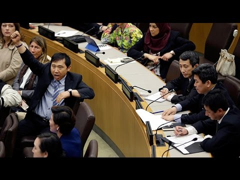 North Korea diplomats storm out of UN rights meeting