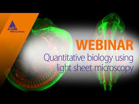 Light Sheet Microscopy [WEBINAR]