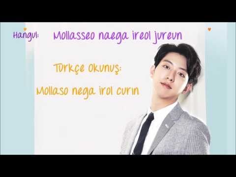 Lee Jungshin - Confession (Hangul Romanization & Türkçe Karaoke)
