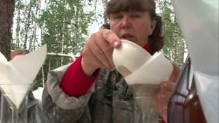 В Красноярском крае обнаружили новые месторождения золота(, 2015-09-04T06:48:40.000Z)