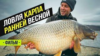 Карпфишинг Поймали Карпа на 21 кг Просянка Водоём Разлив Часть 1