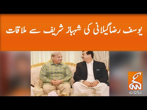 Yousuf Raza Gilani meets Shahbaz Sharif