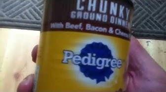 Canned Dog Food Taste Test Purina Vs Pedigree