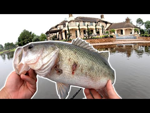 Bass Fishing by $10 MILLION Mansions!! (KICKED OUT)