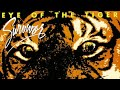 Survivor   Eye of the Tiger Instrumental