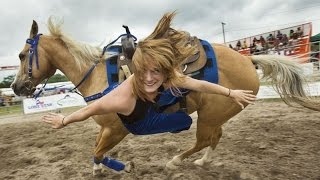 Лучших 10 приколов с лошадьми :) Top 10 tricks with horses