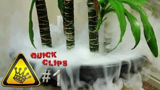 QC#1 - Hot Water & Dry-Ice In a Plant Pot (Just for Fun)