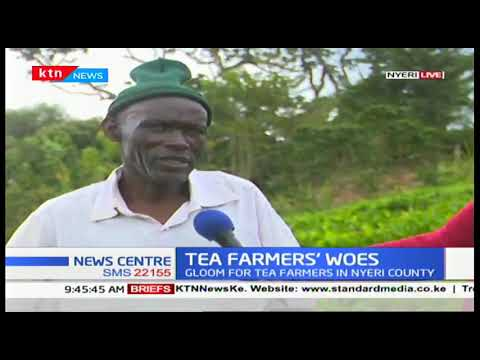 Gloom for tea farmers, this year\'s bonus to go down by 30%
