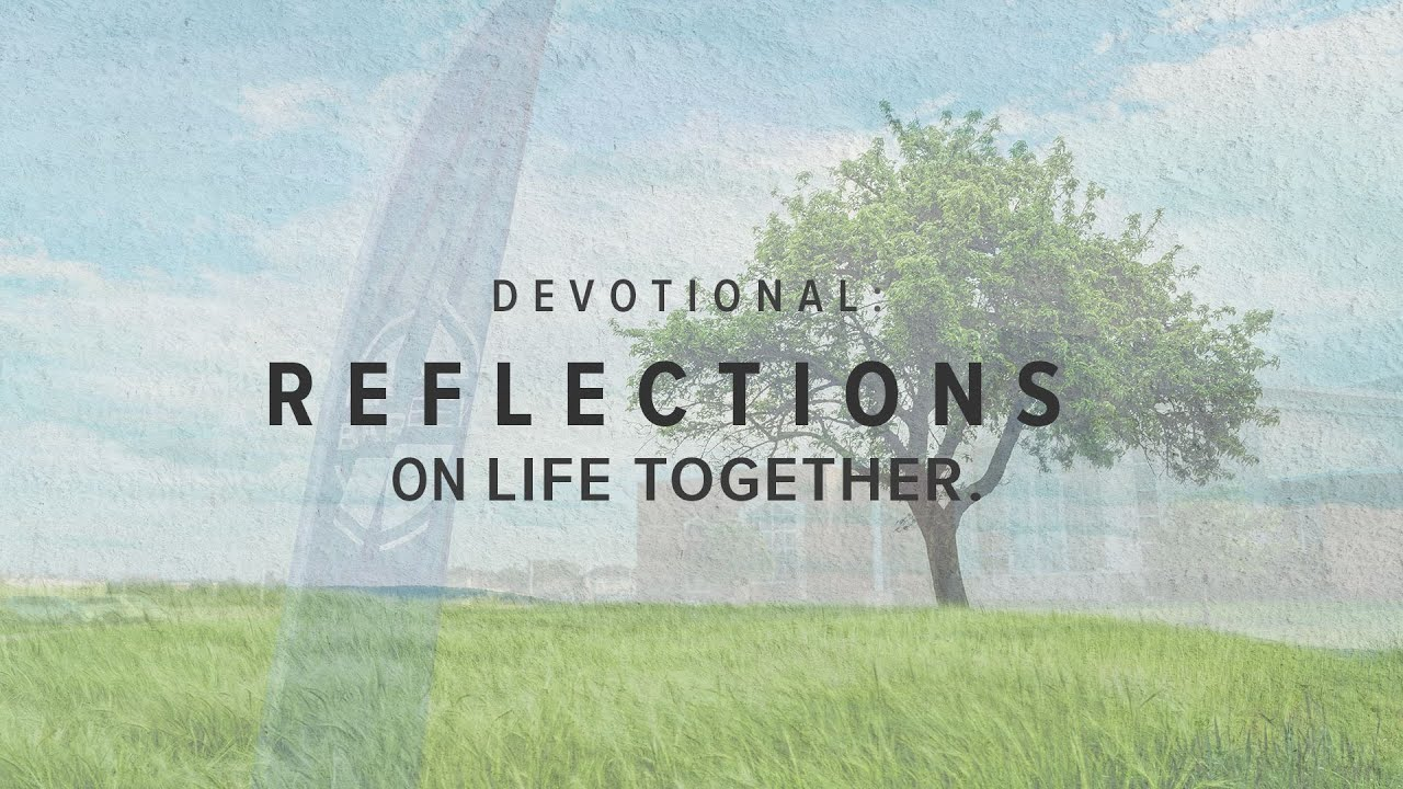 Reflections on Life Together: Everyday Ministry for Everyday Christians