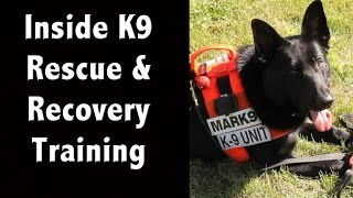 Go Inside A Canine Rescue, Search & Recovery Class - Mark9
