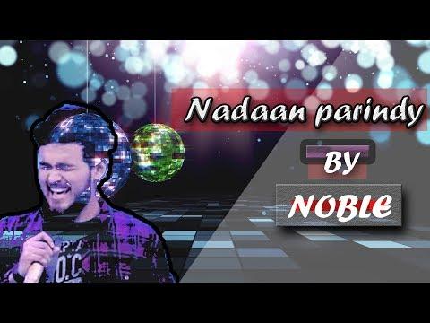 Nadaan Parindey Ghar Aaja By Nobleman