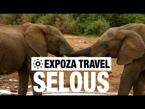 Selous Game Reserve Vacation Travel Video Guide