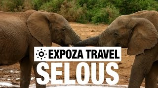 Download lagu Selous Game Reserve Vacation Travel Guide MP3