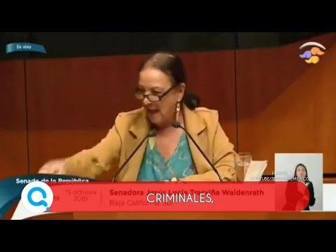 Senadora de Morena ataca a sus compañeros del PAN   Qué Importa