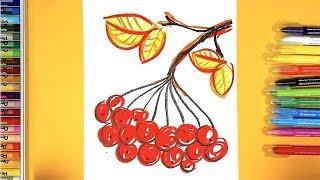 Рисование для детей - Ветка КАЛИНЫ ОСЕНЬЮ - урок рисования для садика